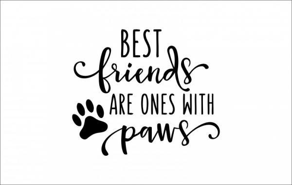 ByHome J57_Best friends faltetoválás