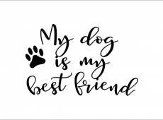 ByHome J58_My dog faltetoválás