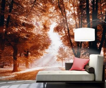 7 őszi dekoráció, ami nem kerül szinte semmibe