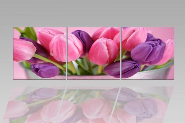 Digital Art vászonkép | 1211-S Tulipe Colore CUBE