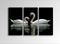 Digital Art vászonkép | 1222-S Swans THREE / POG 4336