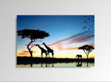 Digital Art vászonkép | 1229-S African Sunset ONE