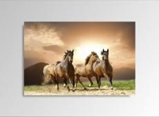 Digital Art vászonkép | 1230-S Running Horses ONE