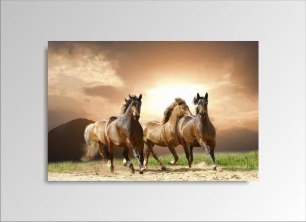 Digital Art vászonkép   1230-S Running Horses ONE