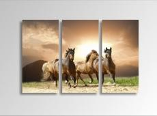 Digital Art vászonkép | 1230-S Running Horses THREE