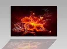 Digital Art vászonkép | 1262-S Fire Flower 2 ONE