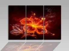 Digital Art vászonkép | 1262-S Fire Flower 2 THREE