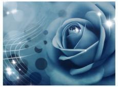 Fotótapéta - Blue rose