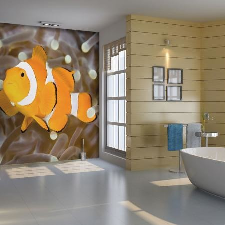 Fotótapéta - Finding Nemo