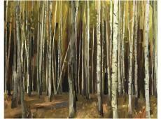 Fotótapéta - Forest ezer fa