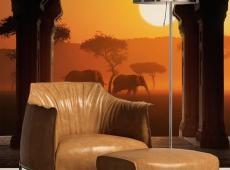 Fotótapéta - Hear Africa