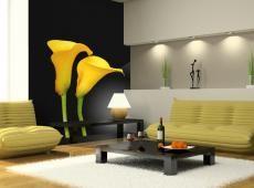 Fotótapéta - Két sárga calla virágok a fekete háttér