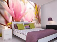 Fotótapéta - Magnólia virág bloosom