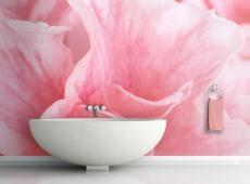 Fotótapéta - Pink azalea virágok