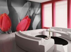 Fotótapéta - Piros tulipánok fekete-fehér, háttér
