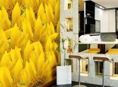Fotótapéta - sunflowers - background