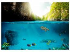 Fotótapéta - Under the waterline