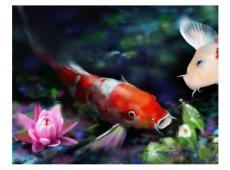 Fotótapéta - Underwater aquarium