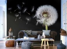 Fotótapéta - Wind and dandelion