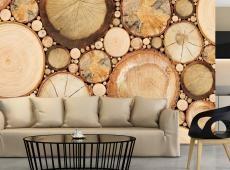 Fotótapéta - Wood grains