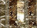 Fotótapéta ajtóra - Photo wallpaper - Golden Background I