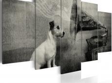 Kép - A dog listening to a gramophone