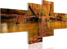 Kép - A footbridge over a forest stream