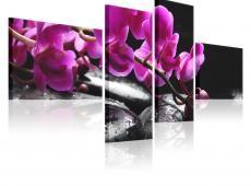 Kép - A pink orchid and Zen stones