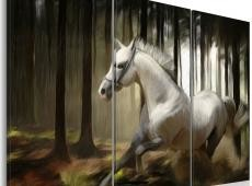 Kép - A white horse in the midst of the trees