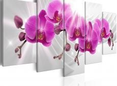 Kép - Abstract Garden: Pink Orchids