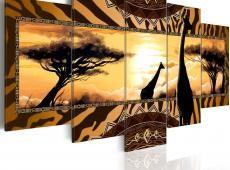 Kép - African giraffes
