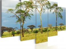 Kép - African greenery