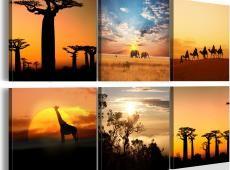 Kép - African sceneries