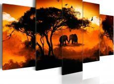 Kép - Afrikai szerelem