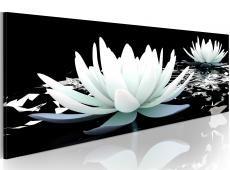 Kép - Alabaster lilies