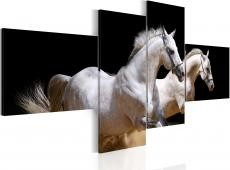Kép - Animal world- white horses galloping