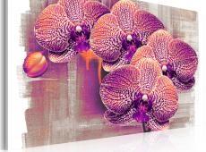 Kép - artistic  flower