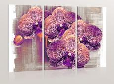 Kép - artistic  flower - Triptych