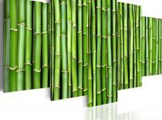 Kép - Bamboo- harmony and simplicity