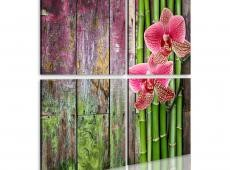 Kép - Bamboo and orchid