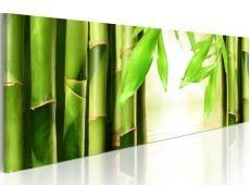 Kép - Bamboo gate