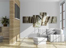 Kép - Bamboo inspiration
