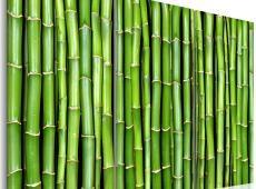 Kép - Bamboo wall