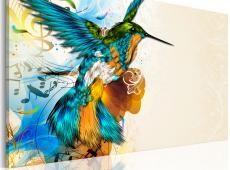 Kép - Bird's music