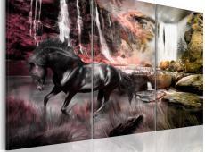 Kép - Black horse by a waterfall