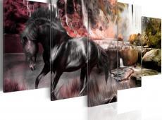 Kép - Black horse on crimson sky background