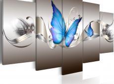 Kép - Blue butterflies