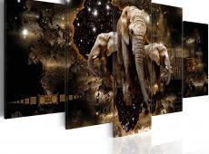 Kép - Brown Elephants