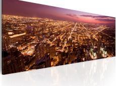 Kép - Canvas print - Flight over Chicago