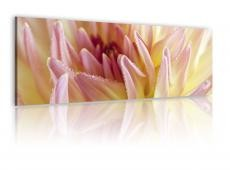 Kép - Canvas print - Sweet flowers